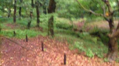 f:id:kabutoyama-tigers:20130716145238j:image