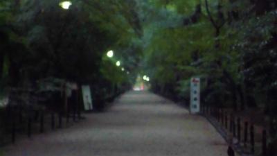 f:id:kabutoyama-tigers:20130716145642j:image
