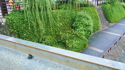 f:id:kabutoyama-tigers:20130717144904j:image