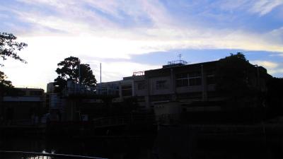 f:id:kabutoyama-tigers:20130723061923j:image