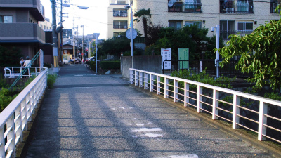 f:id:kabutoyama-tigers:20130723185058j:image