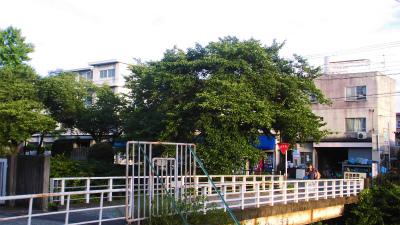 f:id:kabutoyama-tigers:20130723191419j:image