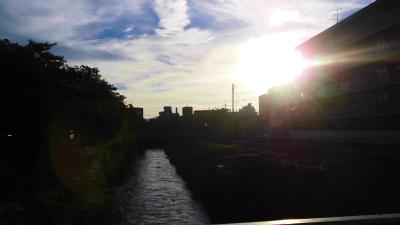 f:id:kabutoyama-tigers:20130724075348j:image