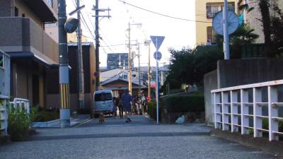 f:id:kabutoyama-tigers:20130725074747j:image