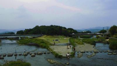 f:id:kabutoyama-tigers:20130727001857j:image