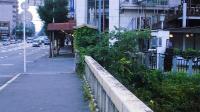 f:id:kabutoyama-tigers:20130727004828j:image