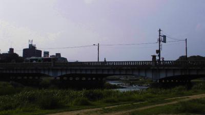 f:id:kabutoyama-tigers:20130727014828j:image