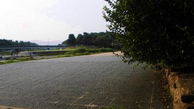 f:id:kabutoyama-tigers:20130727020204j:image