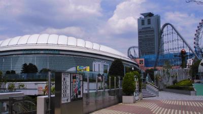 f:id:kabutoyama-tigers:20130805150140j:image