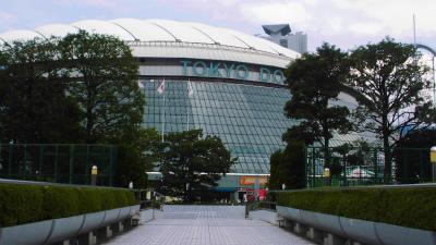 f:id:kabutoyama-tigers:20130805161125j:image