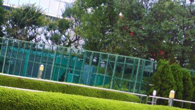 f:id:kabutoyama-tigers:20130805162145j:image