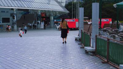 f:id:kabutoyama-tigers:20130805163403j:image