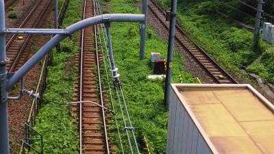 f:id:kabutoyama-tigers:20130806112139j:image