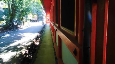 f:id:kabutoyama-tigers:20130807161413j:image