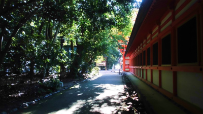 f:id:kabutoyama-tigers:20130807161521j:image