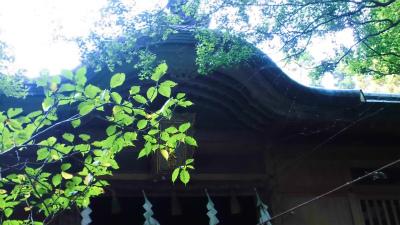 f:id:kabutoyama-tigers:20130820165814j:image