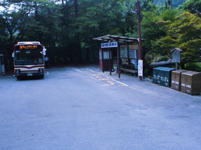 f:id:kabutoyama-tigers:20130820170819j:image