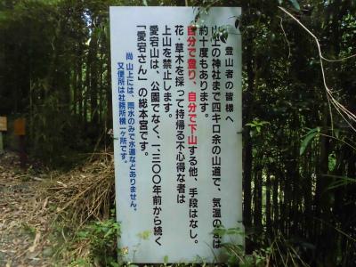 f:id:kabutoyama-tigers:20130820171912j:image