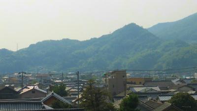 f:id:kabutoyama-tigers:20130821144525j:image