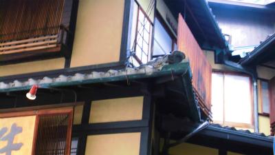 f:id:kabutoyama-tigers:20130827205535j:image