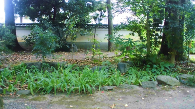 f:id:kabutoyama-tigers:20130903203110j:image