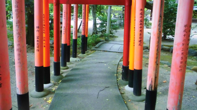 f:id:kabutoyama-tigers:20130903203652j:image