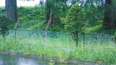 f:id:kabutoyama-tigers:20130911160401j:image