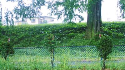 f:id:kabutoyama-tigers:20130911160438j:image