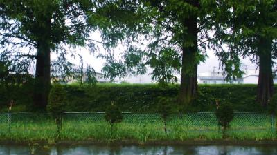 f:id:kabutoyama-tigers:20130911160616j:image