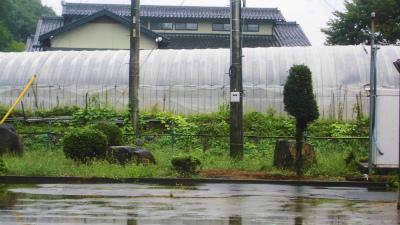 f:id:kabutoyama-tigers:20130912112833j:image