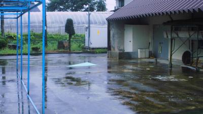 f:id:kabutoyama-tigers:20130912122519j:image