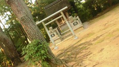 f:id:kabutoyama-tigers:20130925142625j:image