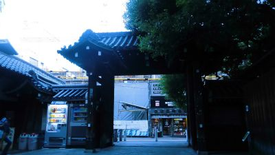 f:id:kabutoyama-tigers:20131002194145j:image