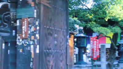 f:id:kabutoyama-tigers:20131002195728j:image