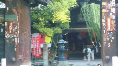 f:id:kabutoyama-tigers:20131002200513j:image