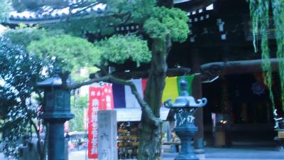 f:id:kabutoyama-tigers:20131002201008j:image