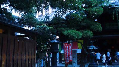 f:id:kabutoyama-tigers:20131002210214j:image