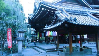 f:id:kabutoyama-tigers:20131002211512j:image