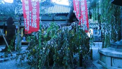 f:id:kabutoyama-tigers:20131003072131j:image