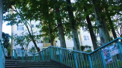f:id:kabutoyama-tigers:20131006205832j:image