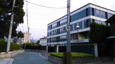 f:id:kabutoyama-tigers:20131008070426j:image
