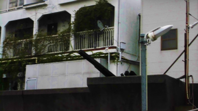 f:id:kabutoyama-tigers:20131011075034j:image