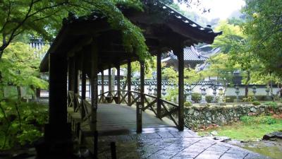 f:id:kabutoyama-tigers:20131011094051j:image