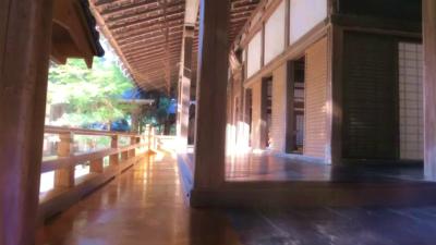 f:id:kabutoyama-tigers:20131011100742j:image