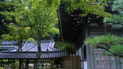 f:id:kabutoyama-tigers:20131011102237j:image