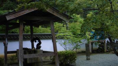 f:id:kabutoyama-tigers:20131011102410j:image