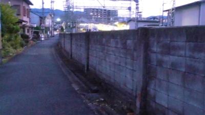 f:id:kabutoyama-tigers:20131012031207j:image