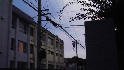f:id:kabutoyama-tigers:20131020114550j:image