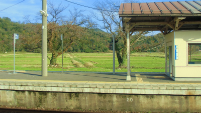 f:id:kabutoyama-tigers:20131114204944j:image