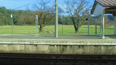 f:id:kabutoyama-tigers:20131114205348j:image